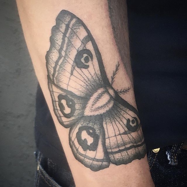 Moth tattoo by Jasmine Worth @jasmineworth To get tattooed by her please email JasmineWorthTattoos@gmail.com #darkart #darkartists #mothtattoo #insecttattoo #moth