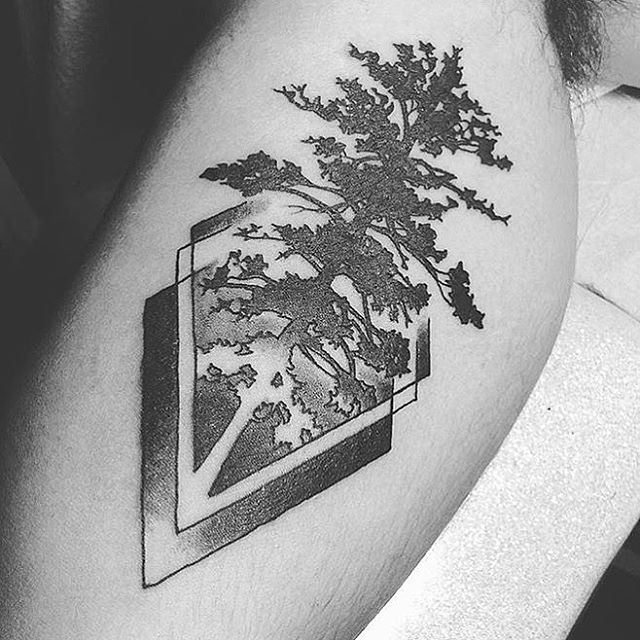 Inner arm tattoo by @johnsabin #treetattoo #innerarmtattoo #blackandgreytattoo #sandiego #northpark #sandiegotattooshop #sandiegotattoo #sandiegotattooartist