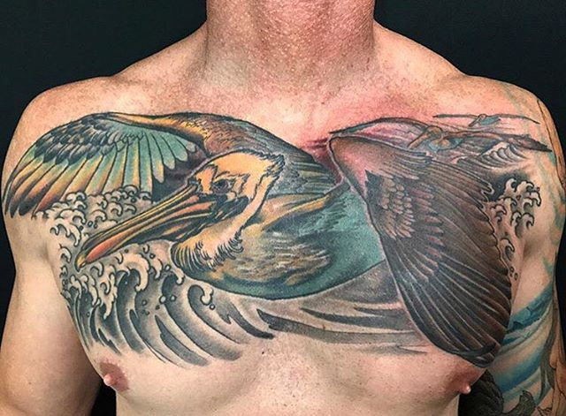Pelican chest tattoo by @nathanieltattoosd #pelican #pelicantattoo #birdtattoo #chesttattoo #sandiegotattoo #sandiegotattooer #sandiegotattooshop #sandiegotattooartist #remingtontattoo