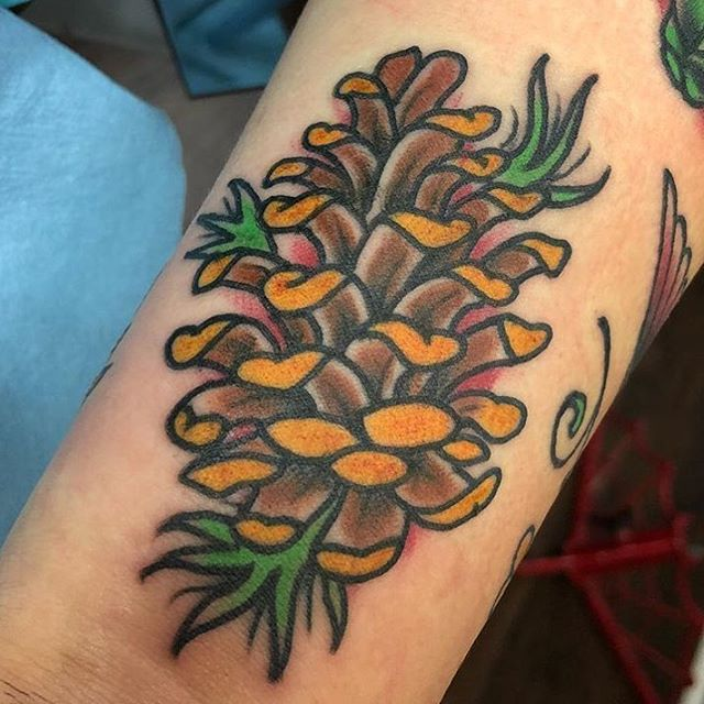This #traditional #pinecone #tattoo done by @chriscockadoodledo at #remingtontattoo #tradtattoo #traditionaltattoo #pineconetattoo #northparktattooartist #sandiegotattooartist #northpark #sandiego #sd